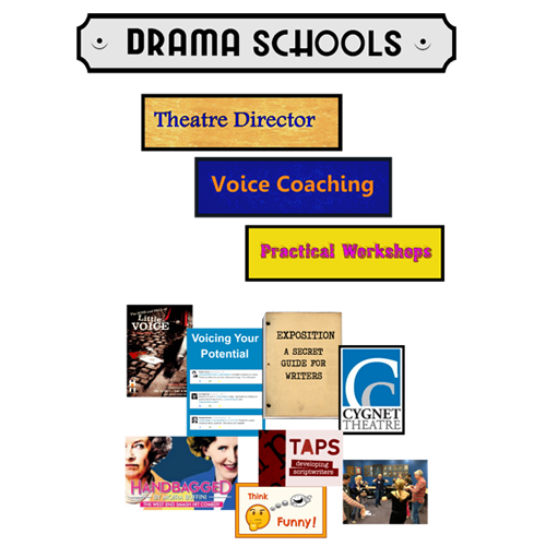 Theatre director coaching cover