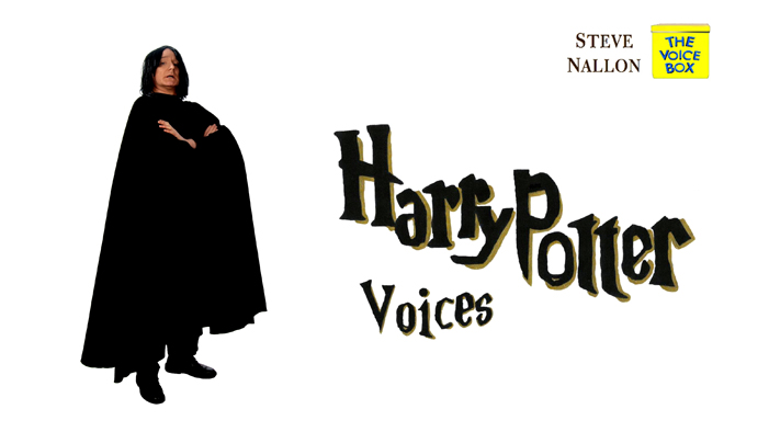 16 HARRY POTTER voices.